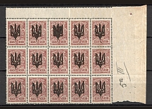 Kiev Type 3 - 5 Kop, Ukraine Tridents Block (Overinked Overprint, Print Error, MNH)
