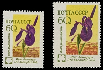 SOVIET UNION: 1960, Flowers, Iris, perforated proof in reduced format of 60k multicolored (issued color), excellent condition, full OG