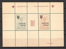 Lithuania Baltic Dispaced Persons Camp Augsburg Block Sheet (Perf)