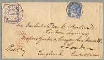 1895, 2 1/2 d. blue and 4 d. black/British Inland Mail/laid paper, one of 41 a c