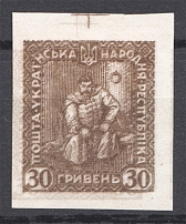 1920 Ukrainian People's Republic 30 Grn (Double Two Side Reversed Printing)