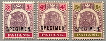 1895, 3 c. - 5 c., set of three, MNH, with black SPECIMEN opt, fresh, excellent
