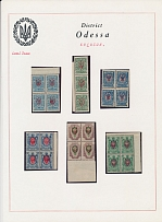 Ukraine - Local Trident Overprints, KHERSON: EXHIBITION STYLE COLLECTION: 1918