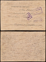Imperial Russia - Military Mailings 1917, POW birch bark postcard to Hungary